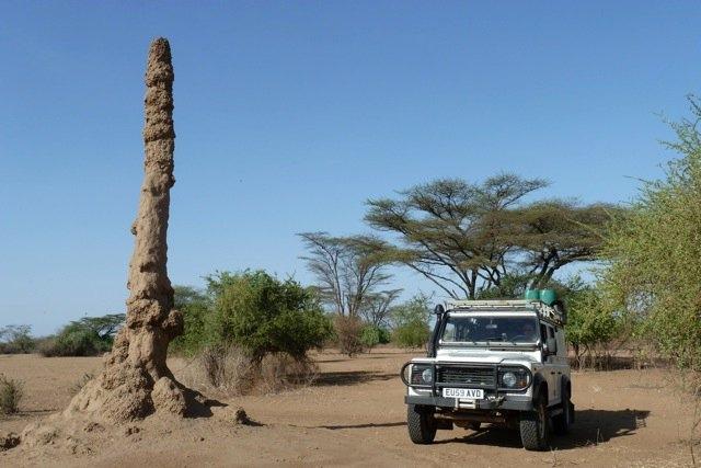 Brunhilde-vs-termite-tower