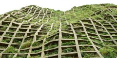 concrete,garden,grid,square,architecture,greenwall-13727f7843ccc8d4432019edbf1e8a65_h