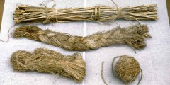 Nettle Fibre - from stalk to spun cord