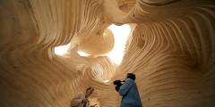 1252156919-termite-pavilion-02