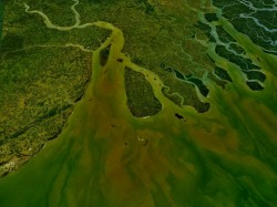 river_ganges_delta