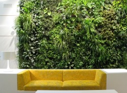 Home-Vertical-Garden