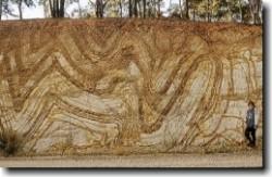 folded+Silurian+sedimentary+rocks_259x169