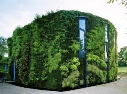 gardenhouse-ed01