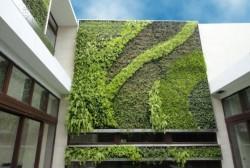gsky-vertical-garden-2-537x361